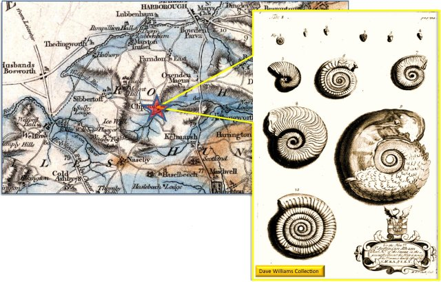 Illustration of Liassic Ammonites from the Clipston Stone-Pit